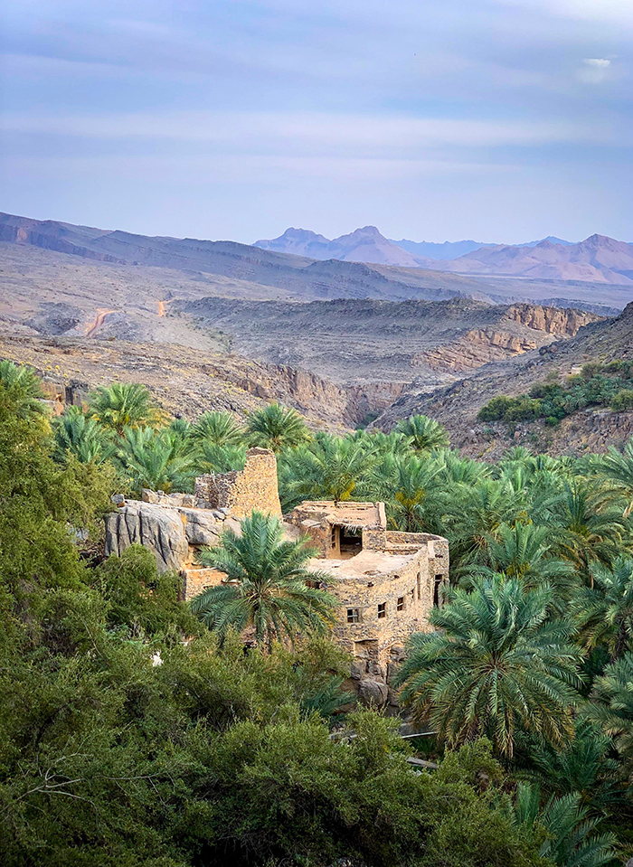 An old castle surrounded with palm trees and mountains