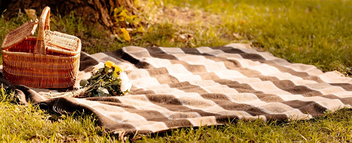 Picnic blanket with a food basket and flowers on it