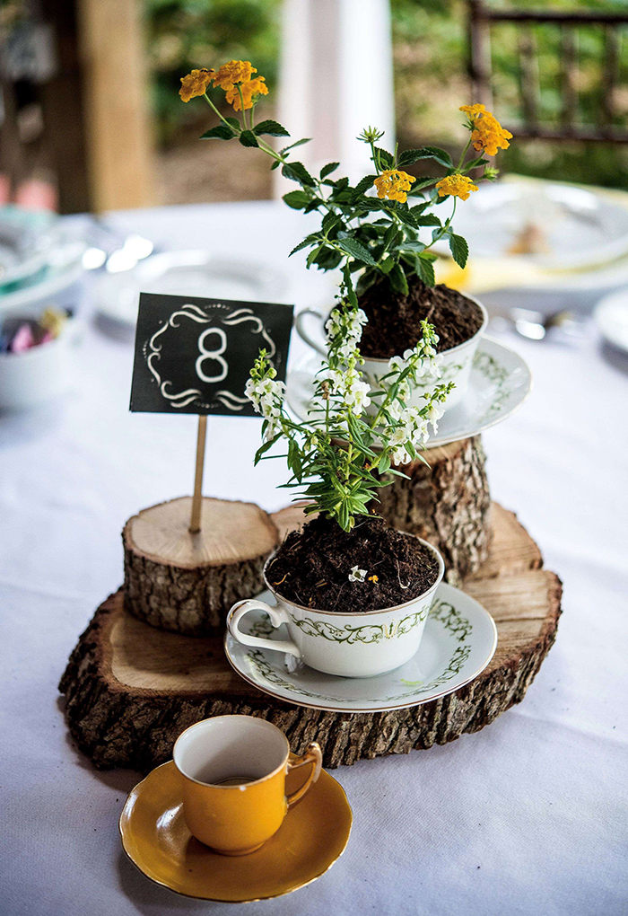 Flowers growing out of tea cups standing on piece of woods