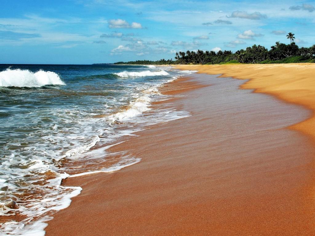 Relaxing beach in Sri Lanka