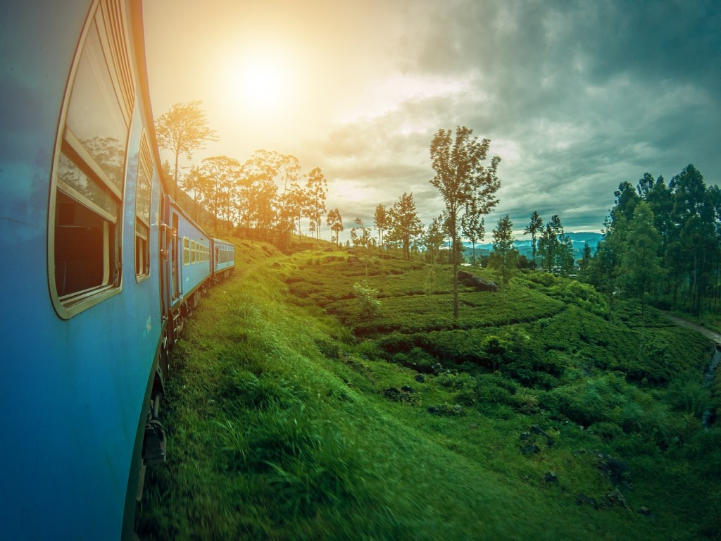 View of a great Sri Lanka nature through a train window