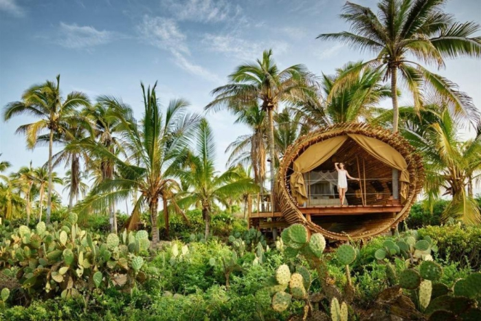 Woman glamping and surrounded with palm trees and cactuses