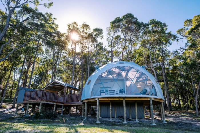 Dome shaped glamping tents in the forest