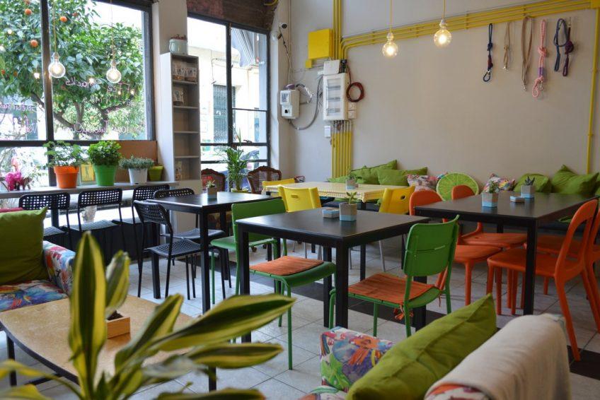 Vegan restaurant in Athens with minimalist interior