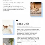 Pet-Friendly Interior Design Tips