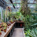 Tips for Efficient Greenhouse Design