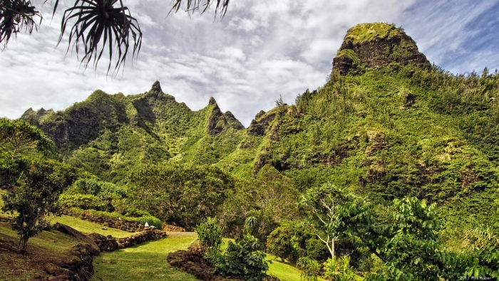Hawaii Tropical Botanical Garden green mountains landscape
