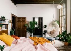 How to make your master bedroom cozy plants in bedroom