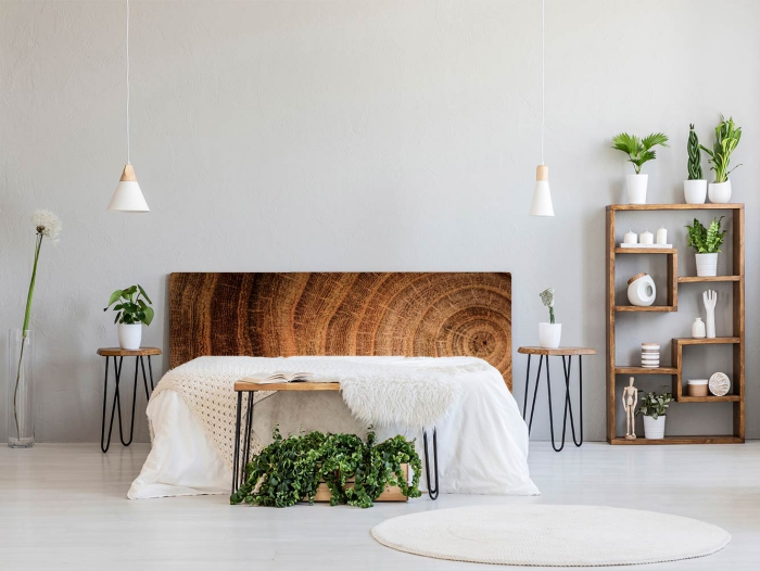 modern clean master bedroom with wooden elements and green plants
