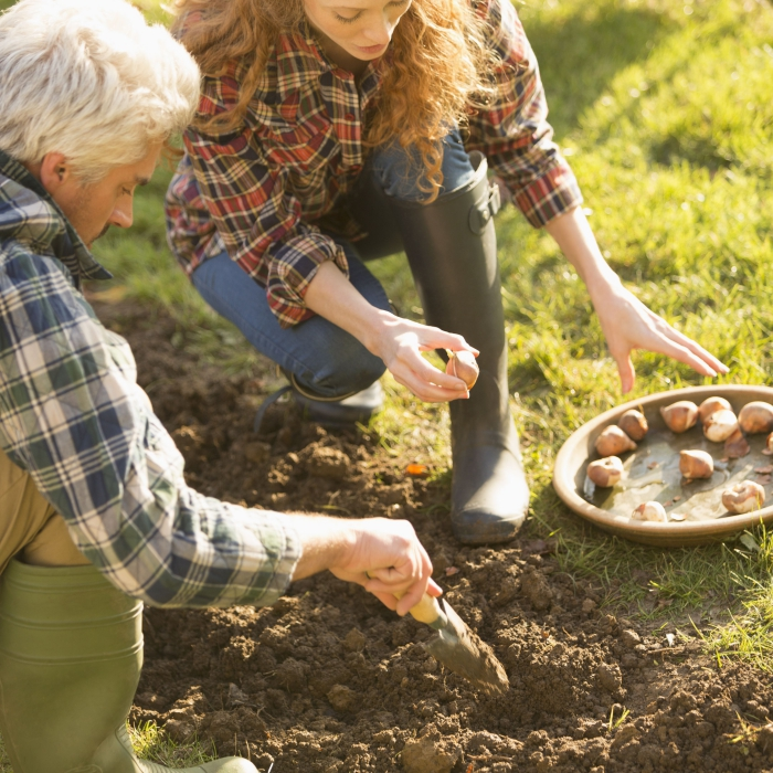 autumn outdoor activities ideas man and woman planting bulbs in a garden