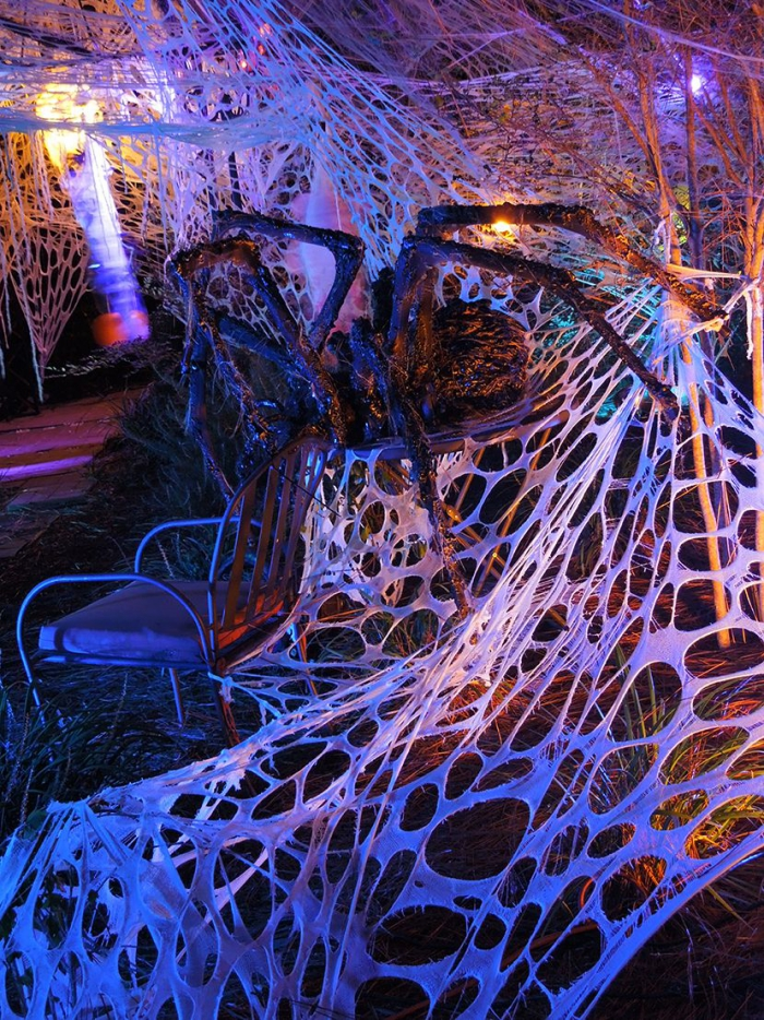 Indoor Halloween spider web with a giant spider and creepy lighting