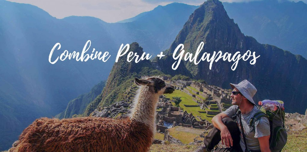 combined trips Machu Picchu and Galapagos man with a hat and a lama