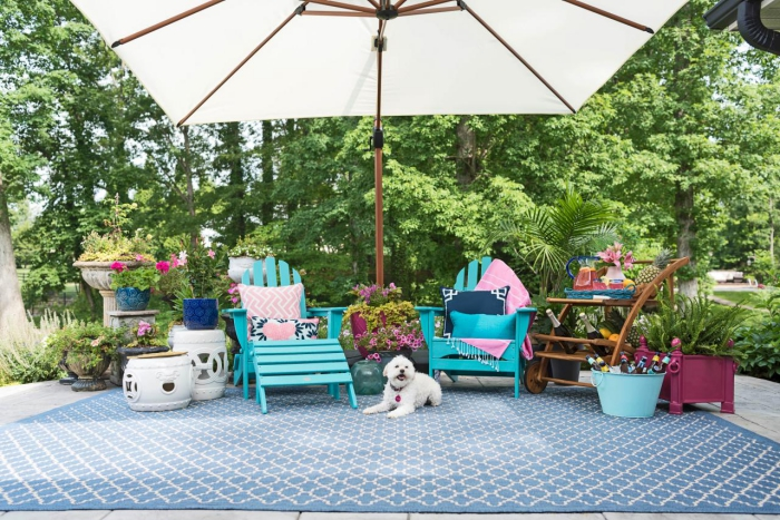 Bright blue patio with greenery a large patio umbrella white dog