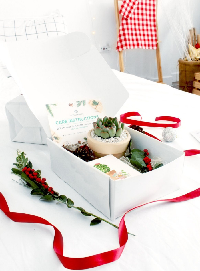 Christmas gift box with a succulent and red ribbon in a white table