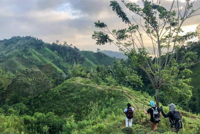 three people trekking through jungle ciudad perdida trek