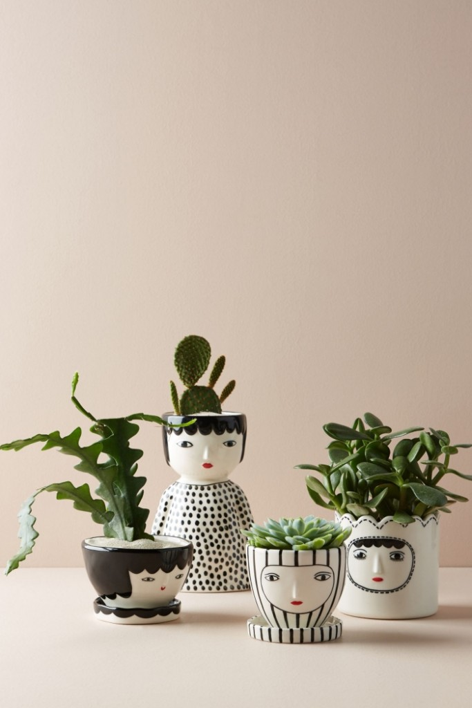 Potted plants in cute pots artistic home decor hand drawn pots
