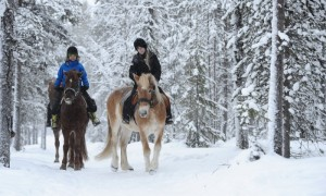 Destinations For Horse Riding In the UK