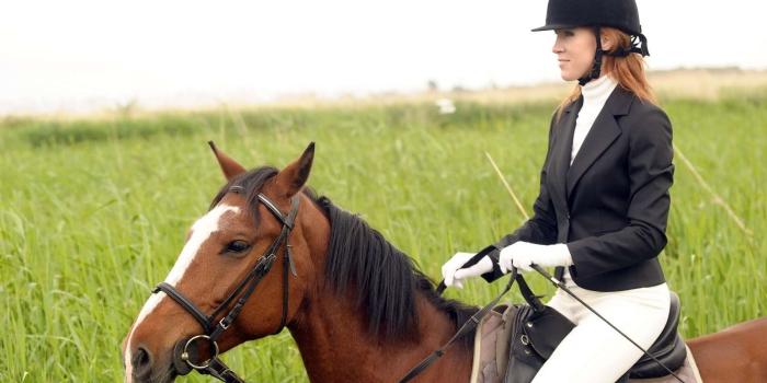 Woman outdoors riding a brown horse green grass field