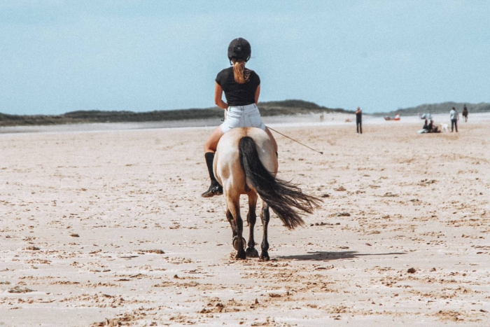 Norfolk horse riding on the beach in the UK woman back riding a horse