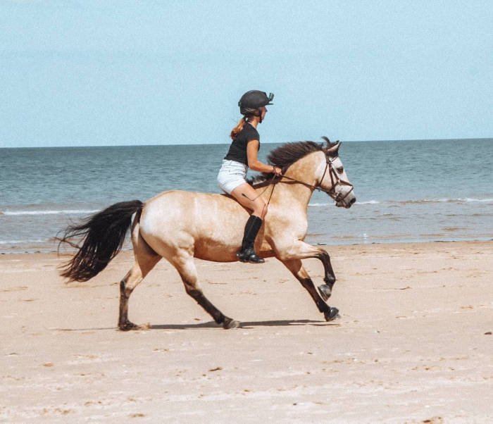 Norfolk horse riding woman on horseback light brown horse on the beach