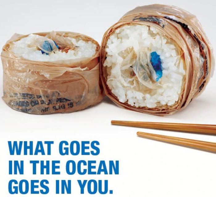 Sushi made of plastic