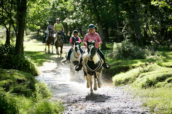 West Sussex horse riding in UK women and children riding horses in the forest