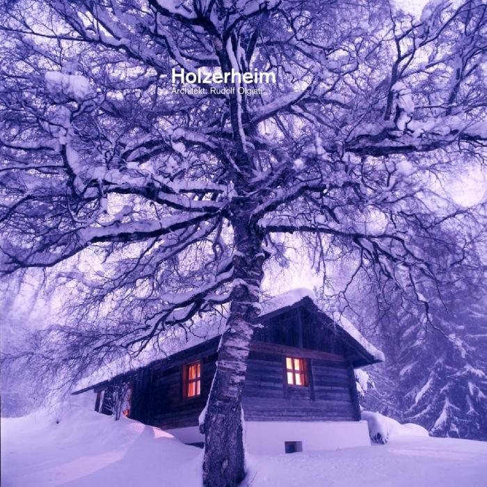 Holzerheim cabin in Switzerland wooden cabin covered in snow tree