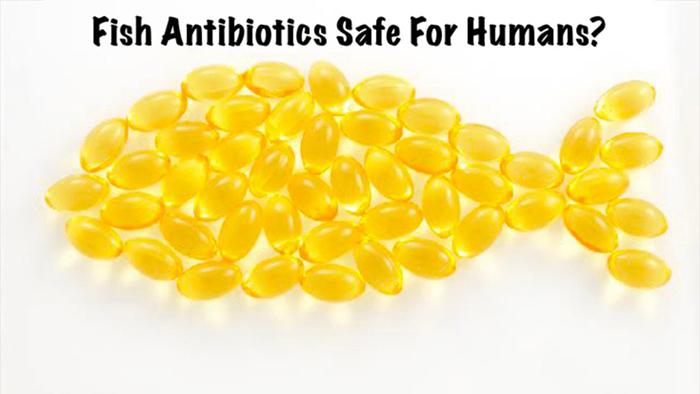 Fish made of yellow capsules