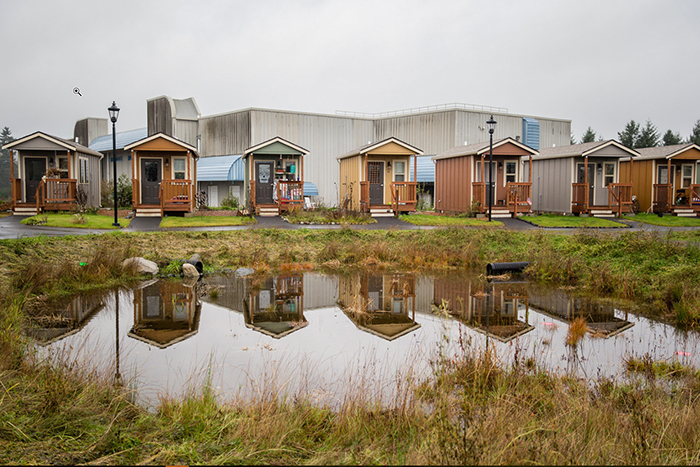a community of tiny homes close to a small pond