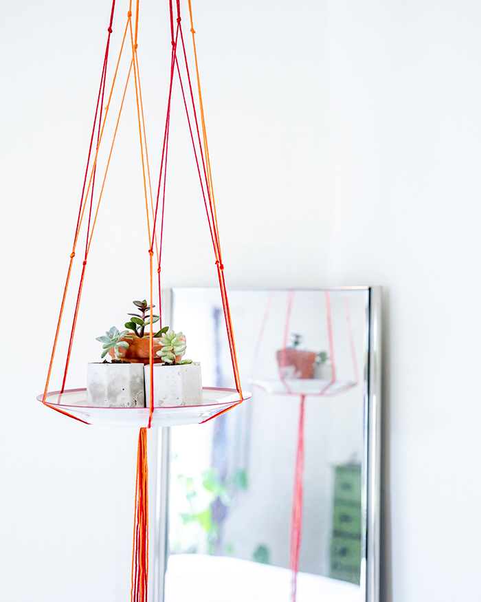 succulent arrangement in a hanging plate colorful ropes home decor succulent care