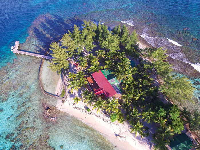 tropical island for sale in Chile palm trees blue water ocean summer villa
