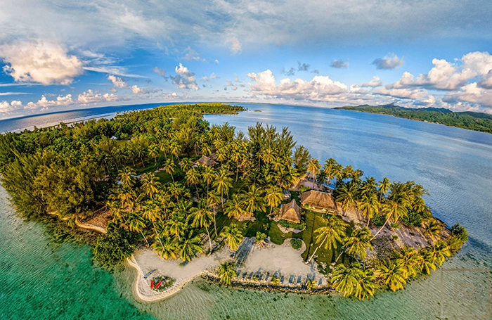 exotic island for sale palm trees clear blue water