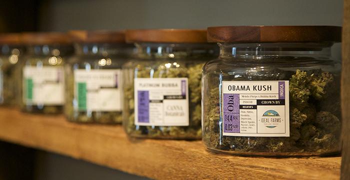 """jars full of of medical marijuana """"Obama Krush""""  at dispensary"""