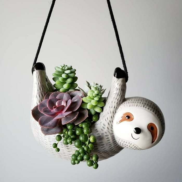 Hanging animal shaped pot indoor succulents