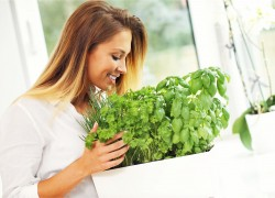 Woman-Growing-Herbs-In-Kitchen