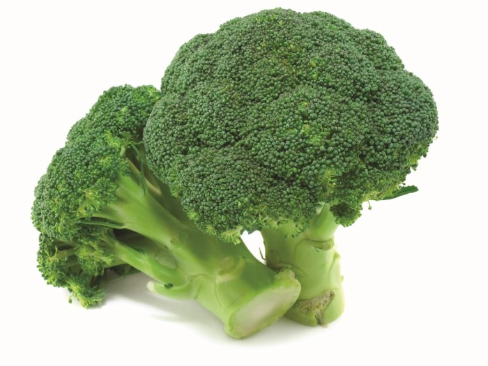 two broccoli on a white background