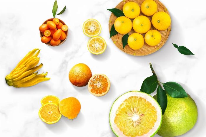 different citrus fruits on a white table lemons oranges grapefruit