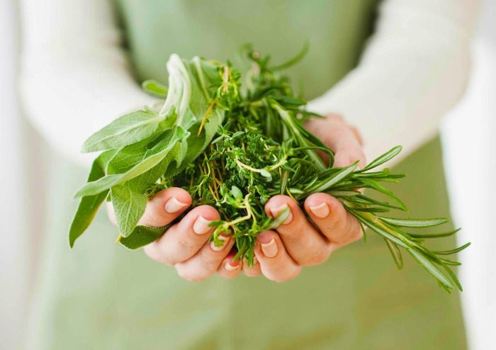 woman dressed in green holding harvested herbs in her hands
