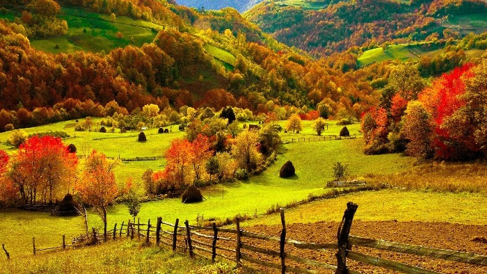 fall natural scenery seasonal colours landscape