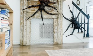 Halloween spider decor ideas