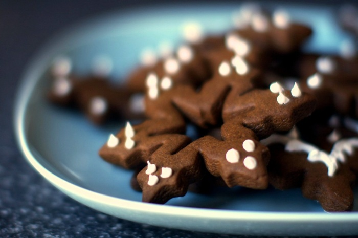 chocolate christmas cookies in a plate decorated with white frosting