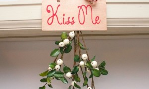 mistletoe_branch