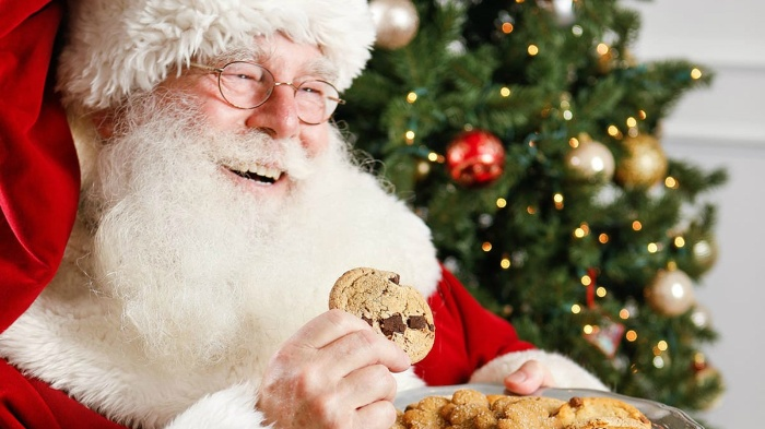 santa claus in his costume eating chocolate chip cookies with a tree in the background