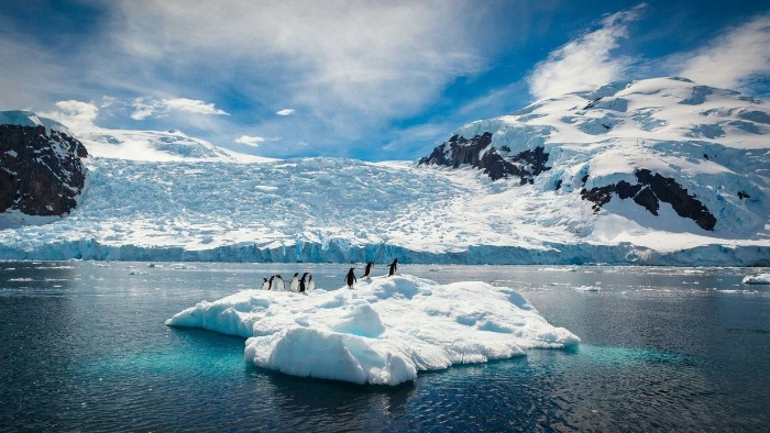 Extreme places on earth antarctic piece of ice with penguins