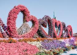 heart garden