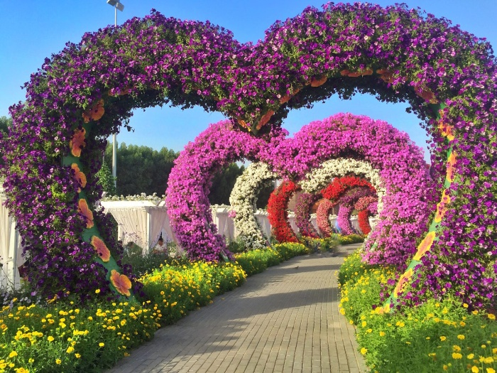 miracle gardens in Dubai heart shaped arcs with pink white and red flowers