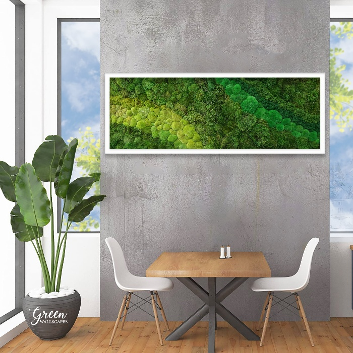 moss frame living plant and modern interior with concrete and sleek furniture