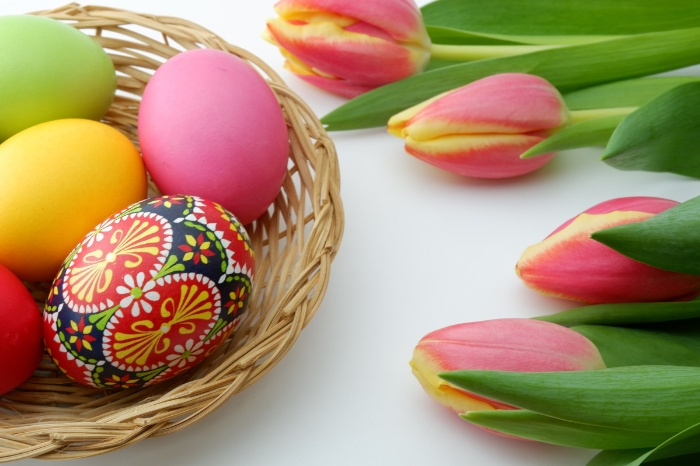 colored easter eggs in a basket with tulips around
