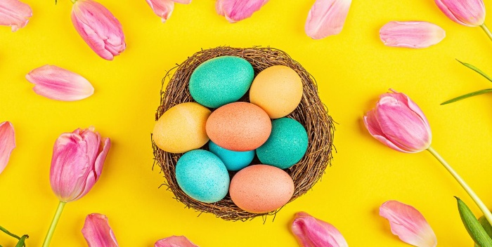 brightly colored easter eggs in a nest surrounded by pink tulips