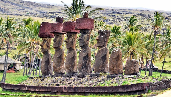 rapa nui typical stone statues on the island with palm trees around